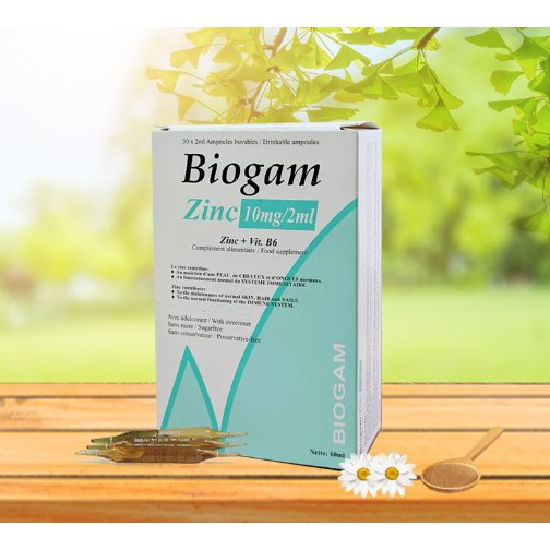 Kẽm nước Biogam